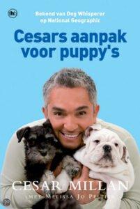 Socialiseren van je Puppy