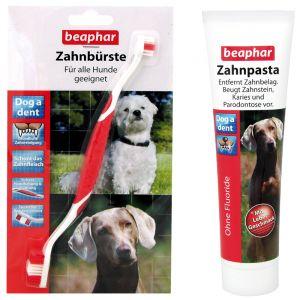 Tandenborstel voor hond