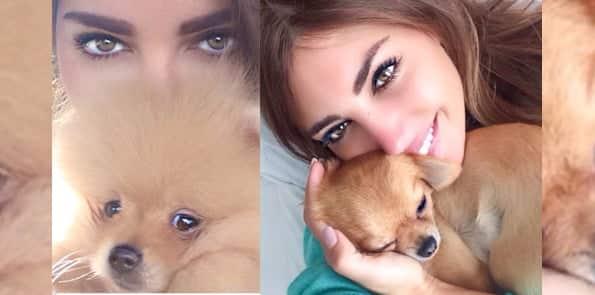 Bn-er Yolanthe en haar hondjes James en toto
