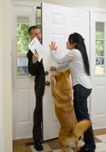 tips om je hond rustig te krijgen als er bezoek komt