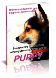 Chihuahua bonus boek 2