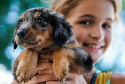Kind met puppy