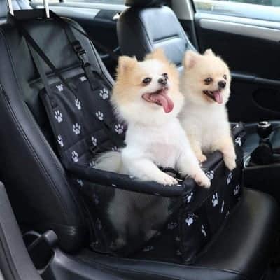 Autostoeltje voor hond die bang is in de auto