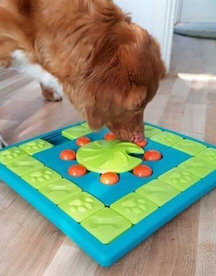Hondenpuzzel