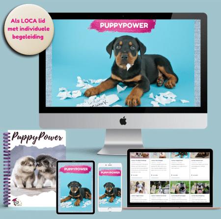 online cursus puppy power
