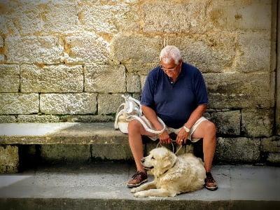 Oudere man zit op een bankje, hond ligt ervoor op de grond